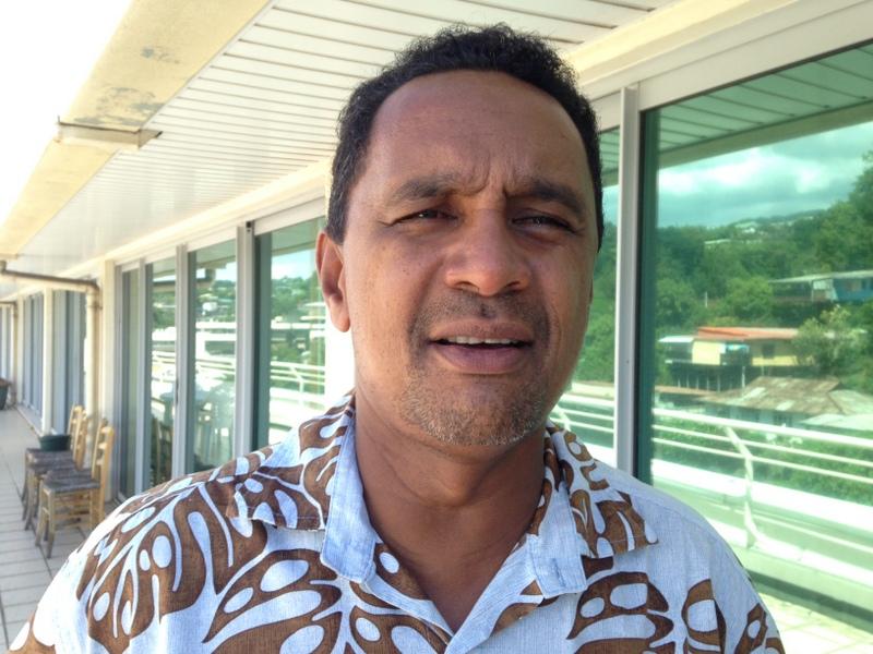 Les promesses du Pin des Caraïbes pour la filière bois locale
