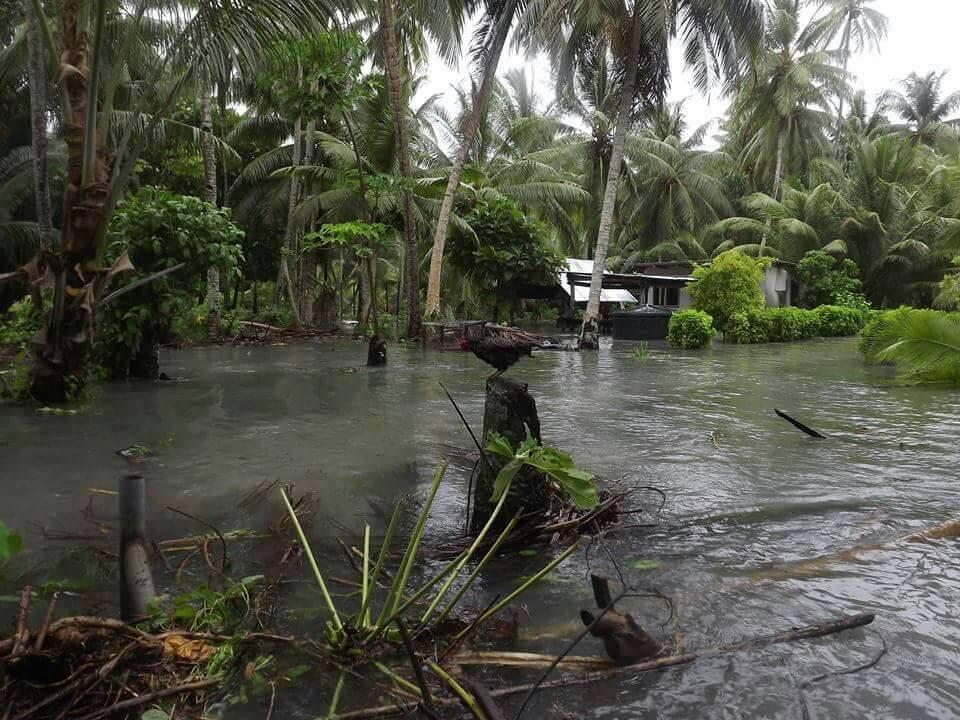 Le Vanuatu après le cyclone Pam en 2016 (PHOTO AFP)