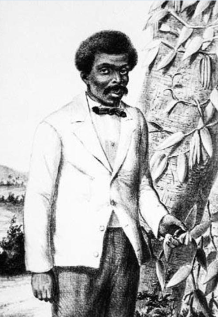 L'unique portrait (sans doute approximatif) d'Edmond Albius, qui découvrit, à douze ans seulement, comment « marier » la vanille.