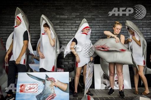 Des militants en requins à Hong Kong pour protester contre la consommation d'ailerons