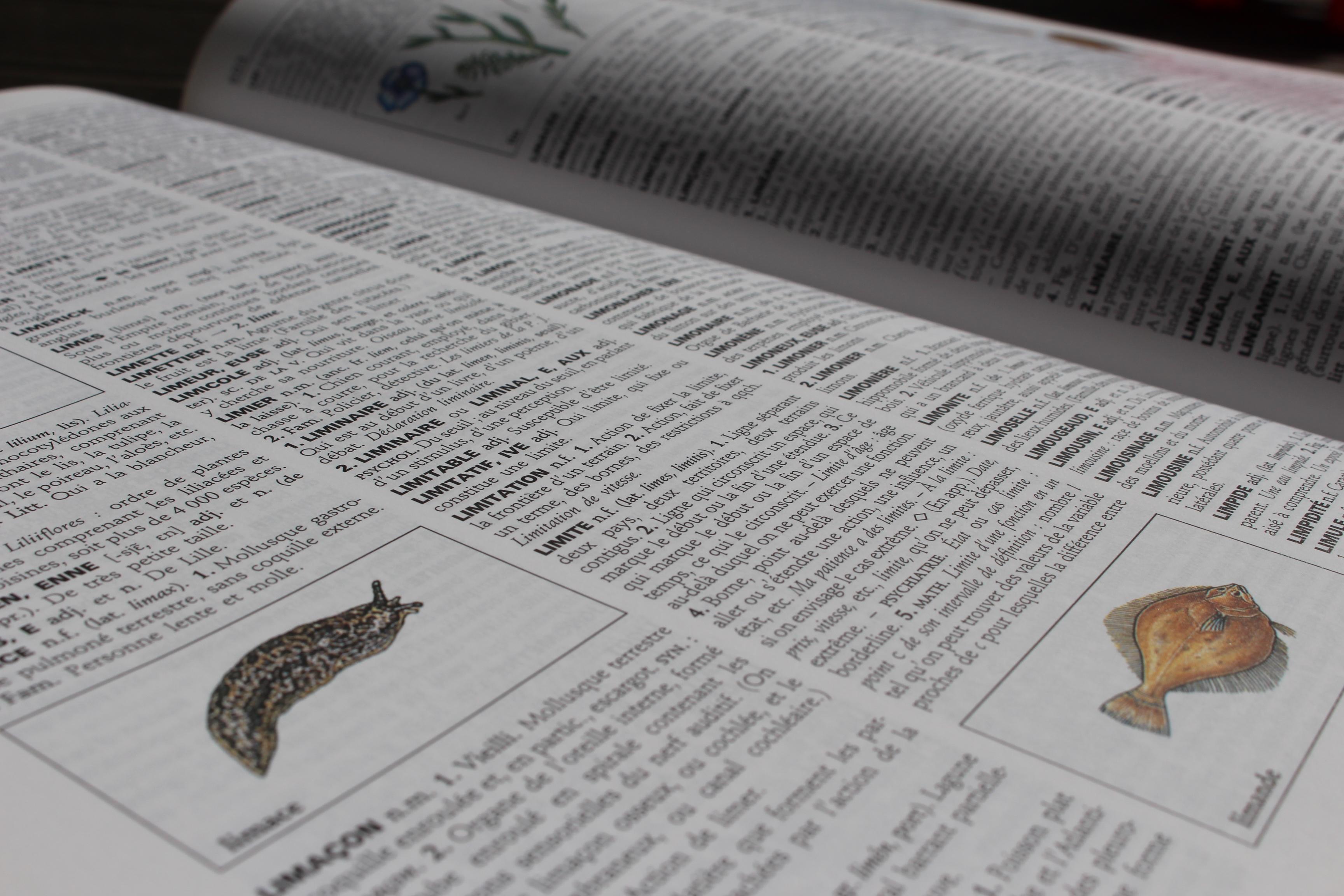 Page enfant : 150 nouveaux mots dans les dicos !