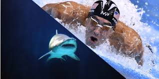 Michael Phelps va nager contre un requin