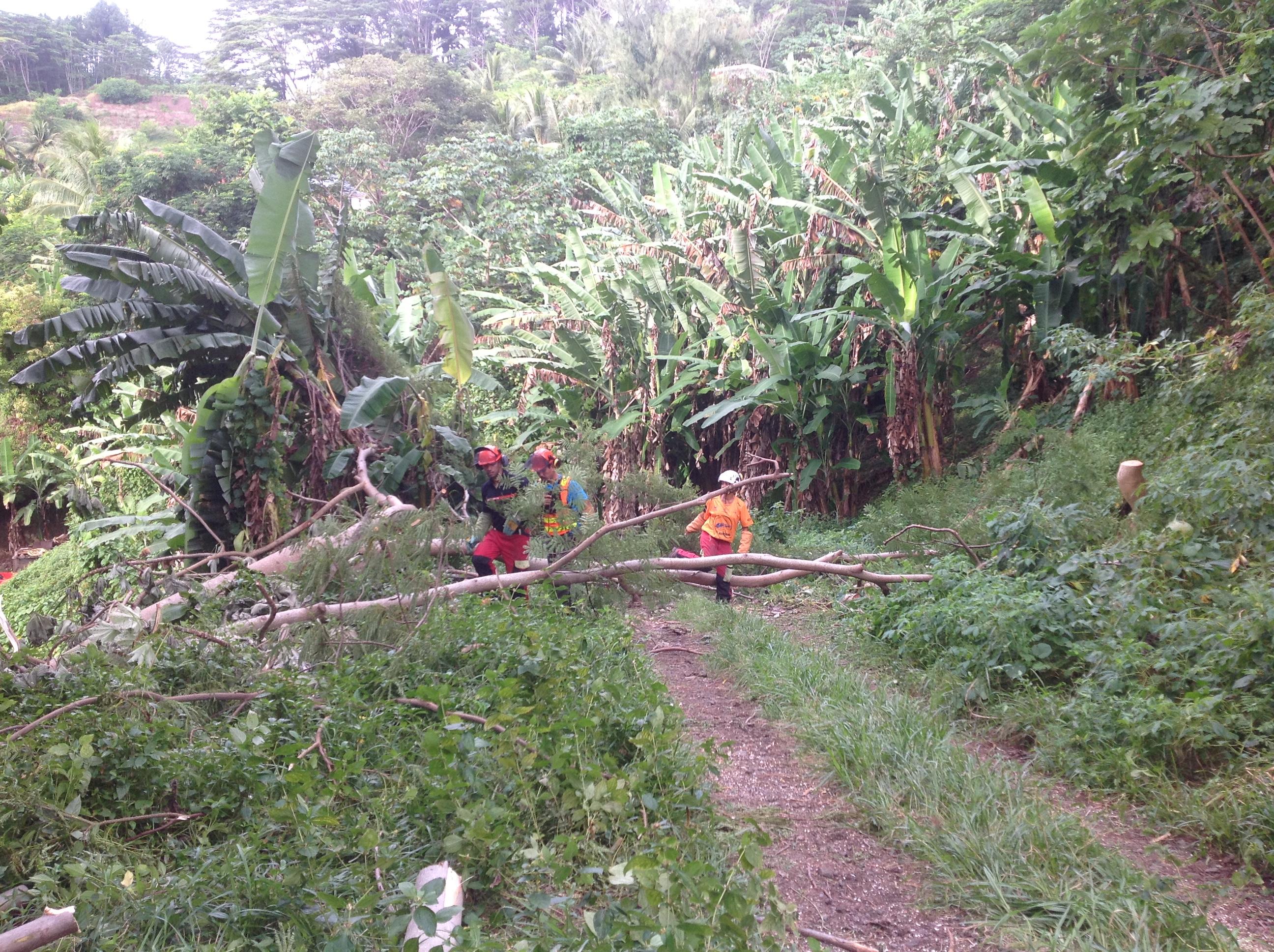 Le volet pratique en milieu naturel a duré deux jours, afin de mettre en pratique les connaissances des stagiaires.