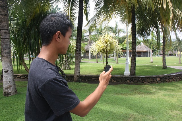 Pour trouver la géocache déposée au Parc Tahua Autonomie (anciens jardins de Paofai), équipez-vous d'un smartphone.