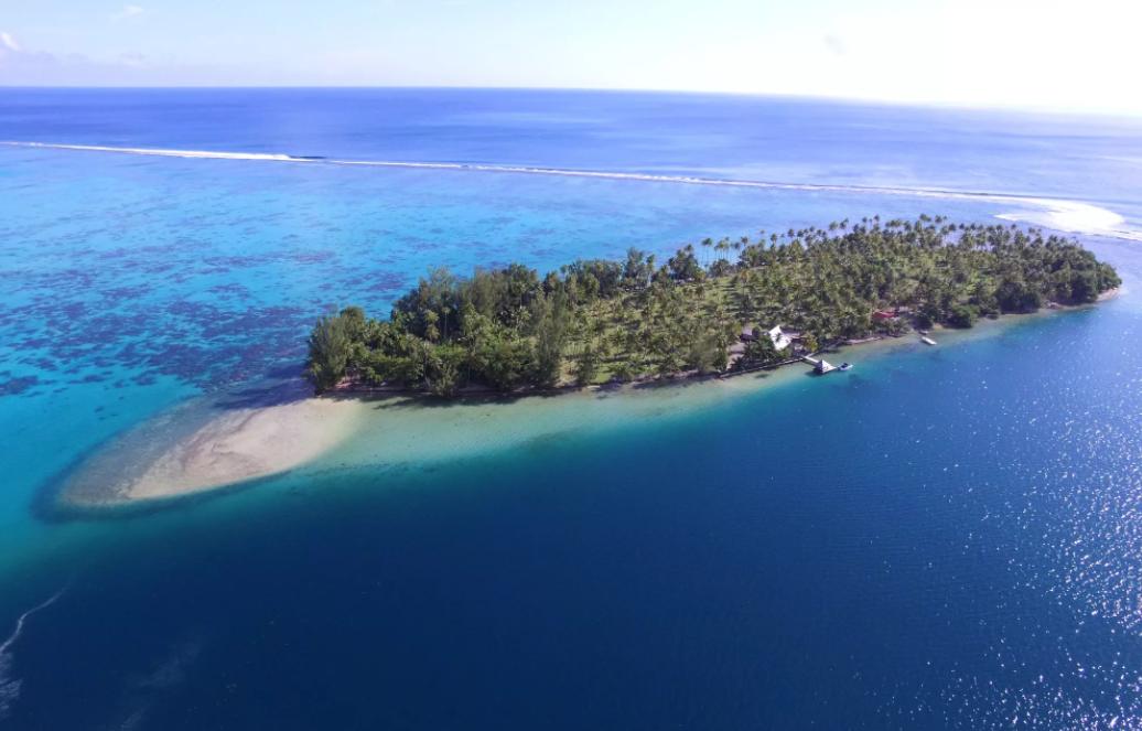 Le motu Tiano de Raiatea sera mis aux enchères le 23 août prochain au prix de réserve de 6 millions USD. (photo : /www.conciergeauctions.com)