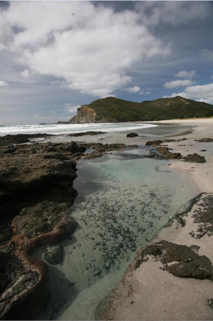 Carnet de voyage - Reinga : le cap des âmes maories défuntes