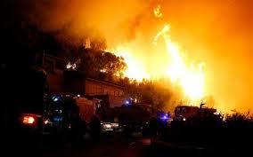 Incendies: près de 4.000 hectares de forêts détruits, l'Europe sollicitée