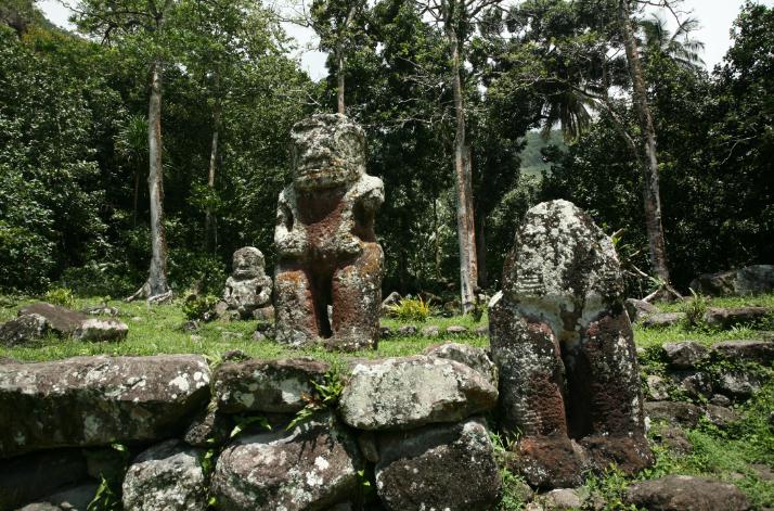 Une vue très classique du cœur de Iipona, avec trois de ses plus gros tiki sur le paepae Pahivai : Maiauto, décapité, au premier plan, Takaii, le plus grand, et Fau Poe à l'arrière-plan. L'humidité ambiante contribue à fortement dégrader la pierre dans laquelle ont été sculptées ces pièces majeures de l'art polynésien qui sont, depuis peu, à l'abri des éléments.