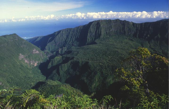 Une vue des plateaux aux orangers de la Punaruu, depuis le belvédère du Marau, à 1 200 m d'altitude.