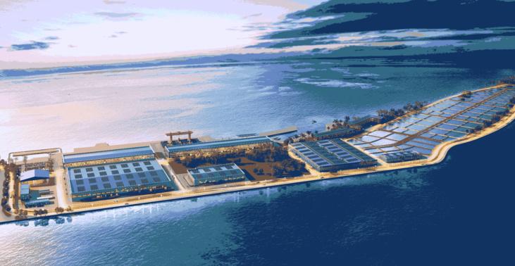Les océans pourraient accueillir des millions de km2 d'aquaculture (étude)