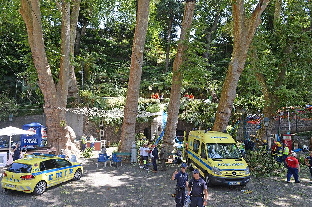 Portugal: la chute d'un arbre fait une dizaine de morts à Madère