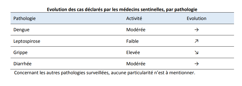 Grippe, dengue, diarrhée et leptospirose circulent toujours