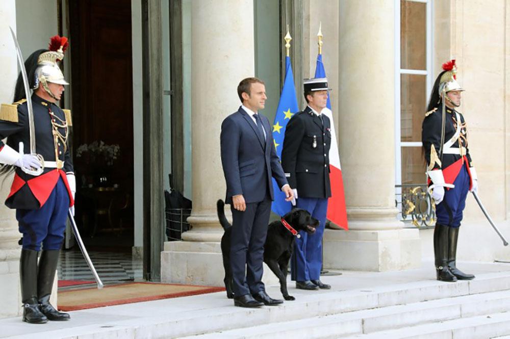"""Macron, sous pression, ne veut pas """"céder aux Cassandre"""""""