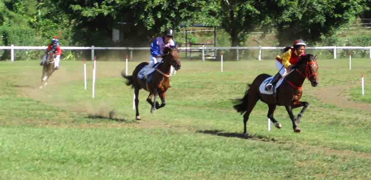 Hippodrome: Record de la piste et cagnotte pour les gagnants du jumelé