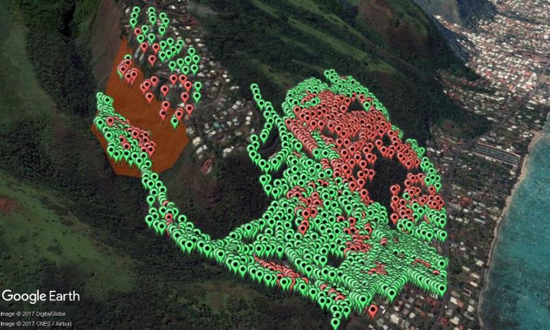 La colonie de la falaise de Te Maru Ata, en rouge à gauche, qui a été traitée par drone tandis qu'à l'embouchure de cette vallée vit la mégacolonie de PFF du PK 17