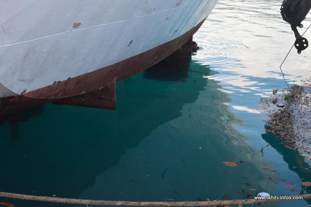 Le safran gauche du navire s'est perdu en mer.