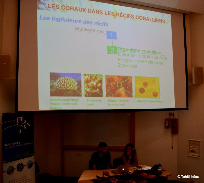 Ces chercheurs du Criobe ont utilisé les outils du réseau de biomimétisme, et ont rapidement trouvé des soltuions innovantes à leurs problèmes quotidiens dans la préservation du corail.