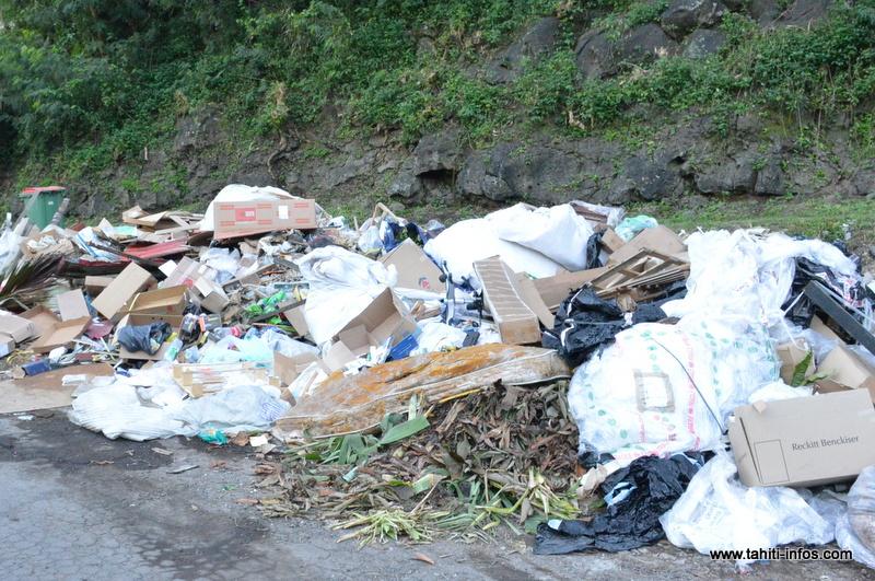 """La Polynésie doit """"renforcer sa gouvernance environnementale"""" (CTC)"""