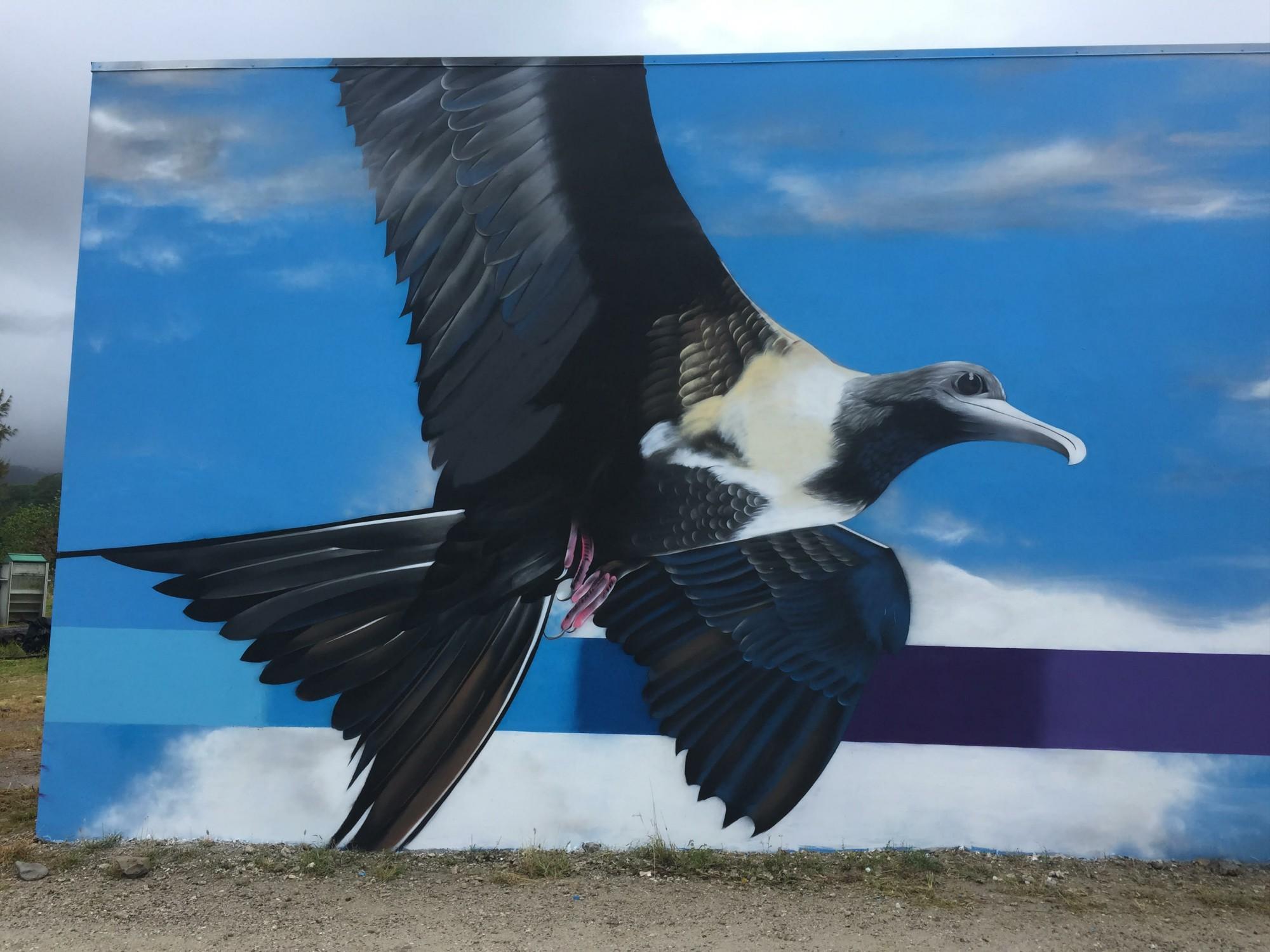 Les oiseaux polynésiens Otaha peints par Charles et Janine Williams.