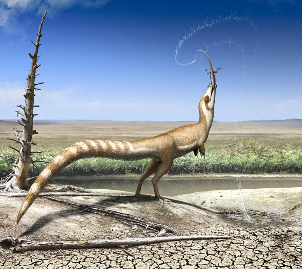 Un petit dinosaure à plumes se camouflait pour échapper aux prédateurs