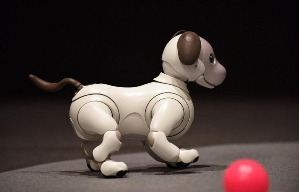 Sony dévoile la nouvelle version de son chien robot Aibo