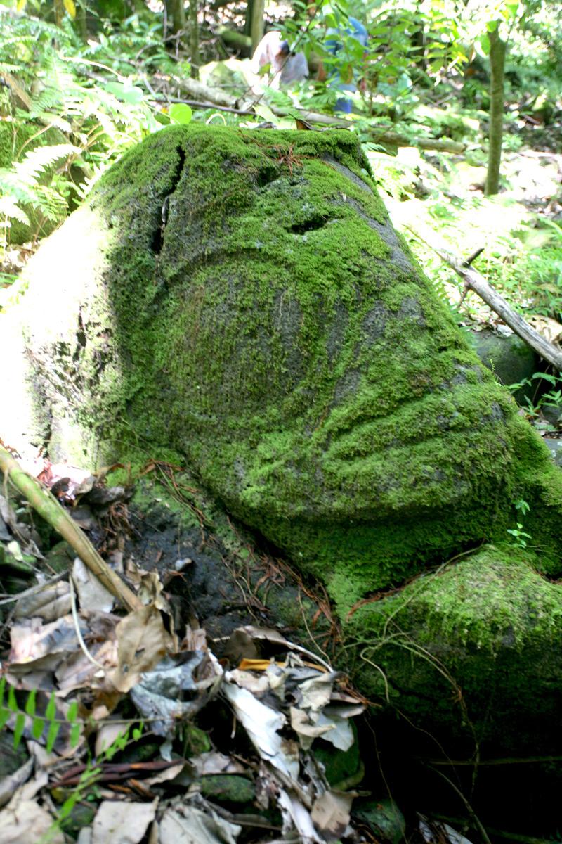 Le majestueux tiki veillant sur la vallée, caché dans la végétation sur les hauteurs de Aakapa, objet de notre recherche.