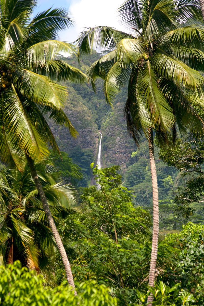 Au fond de la vallée de Taipivai, une magnifique cascade offre ses eaux fraîches aux promeneurs.