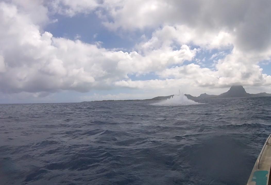 Quatre obus ont déjà été détruits au large de Bora Bora. (Photo : Marine nationale)