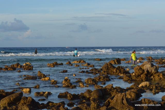 """Contrairement à Tahiti, les """"ina'a"""" de Makemo se pêchent dans la mer. Ici, les jeunes de l'atoll s'en donnent à coeur joie."""