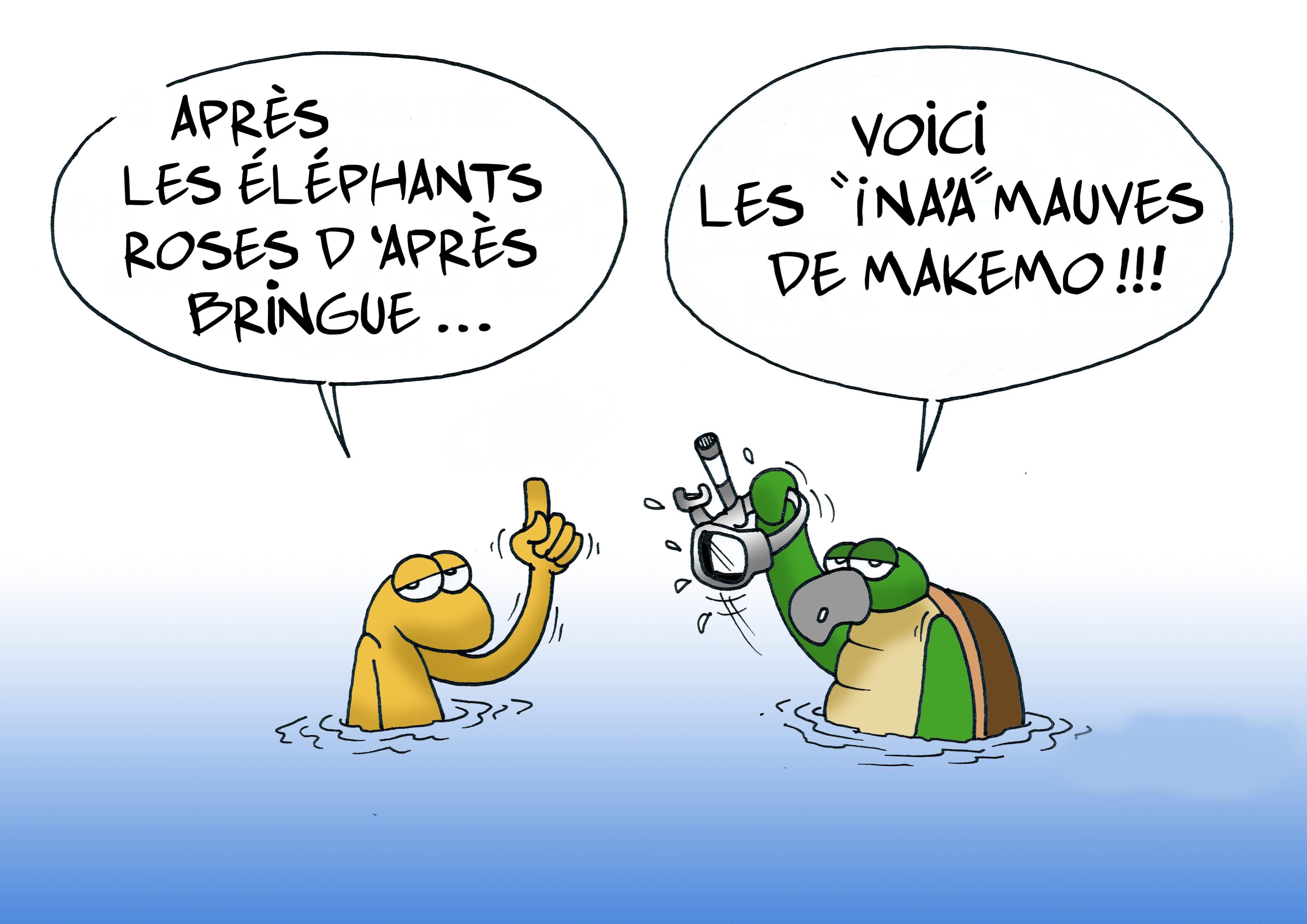""""""" Des """"ina'a"""" roses et mauves à Makemo """" vu par Munoz"""