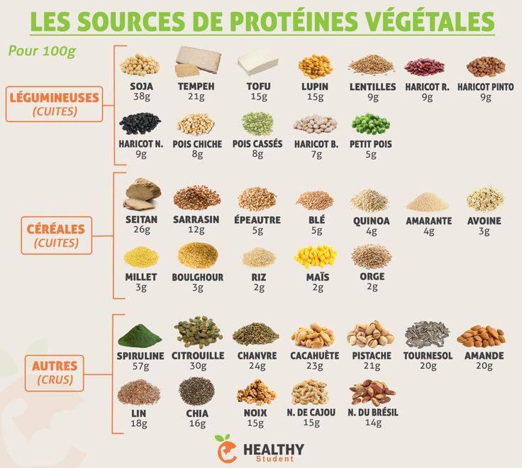 Les proteines végétales