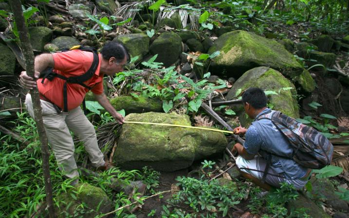 Sous la toise, ce singulier  tiki mesure 122 cm. Les tiki de pierre portant leur main à la bouche sont très rares.