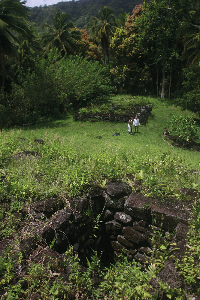Le site de Paeke vu depuis sa terrasse supérieure ; au premier plan, une fosse qui a pu avoir deux usages ; conserver les fruits de l'arbre à pain ou des prisonniers dans l'attente d'être sacrifiés.