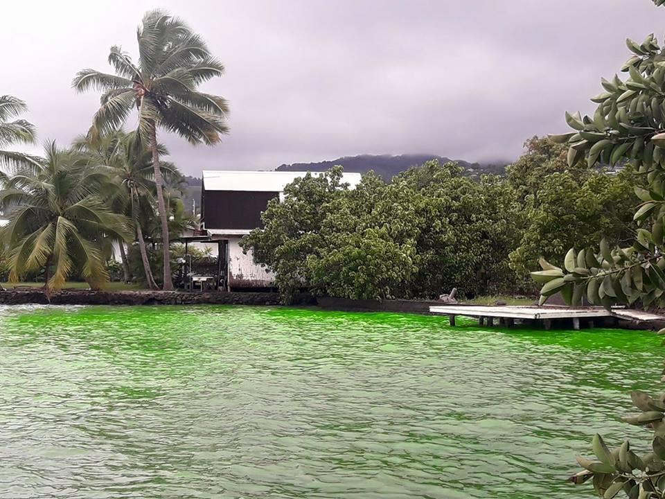 Comment une rivière de Arue est devenue vert fluo