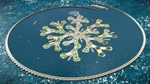 Daniel Nagy explique qu'il est possible de créer une monnaie qui serait la devise officielle de l'île, utilisées pour acheter des appartements sur l'île flottante et pour toutes les transactions commerciales qui y auraient lieu.