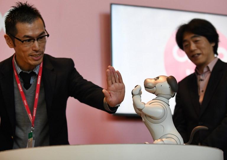 Japon: le nouveau chien robot Aibo adopté par ses maîtres
