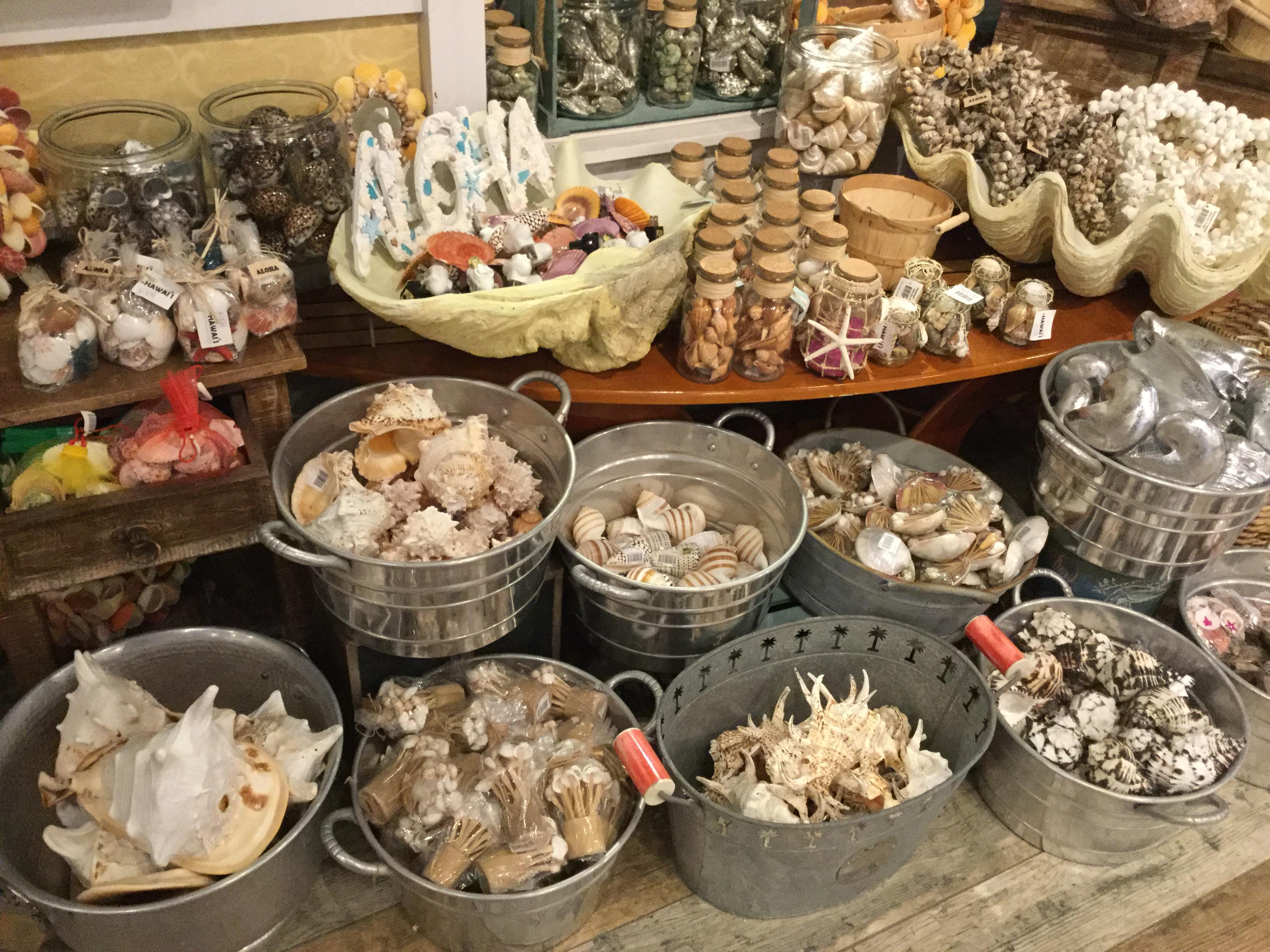 Un échantillon de souvenirs vendus dans une butique de HawaIIi: tout y passe, coquillages, étoiles de mer, coraux, et même petites mâchoires de requins!