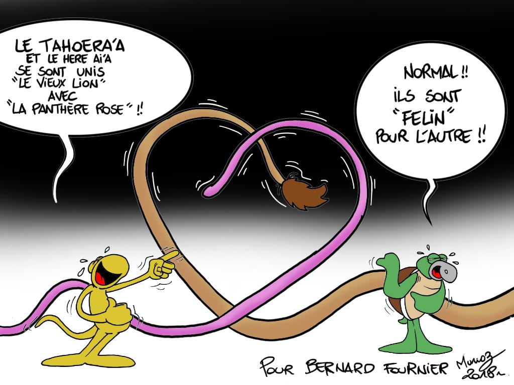 """"""" Félin pour l'autre ! """" par Munoz"""