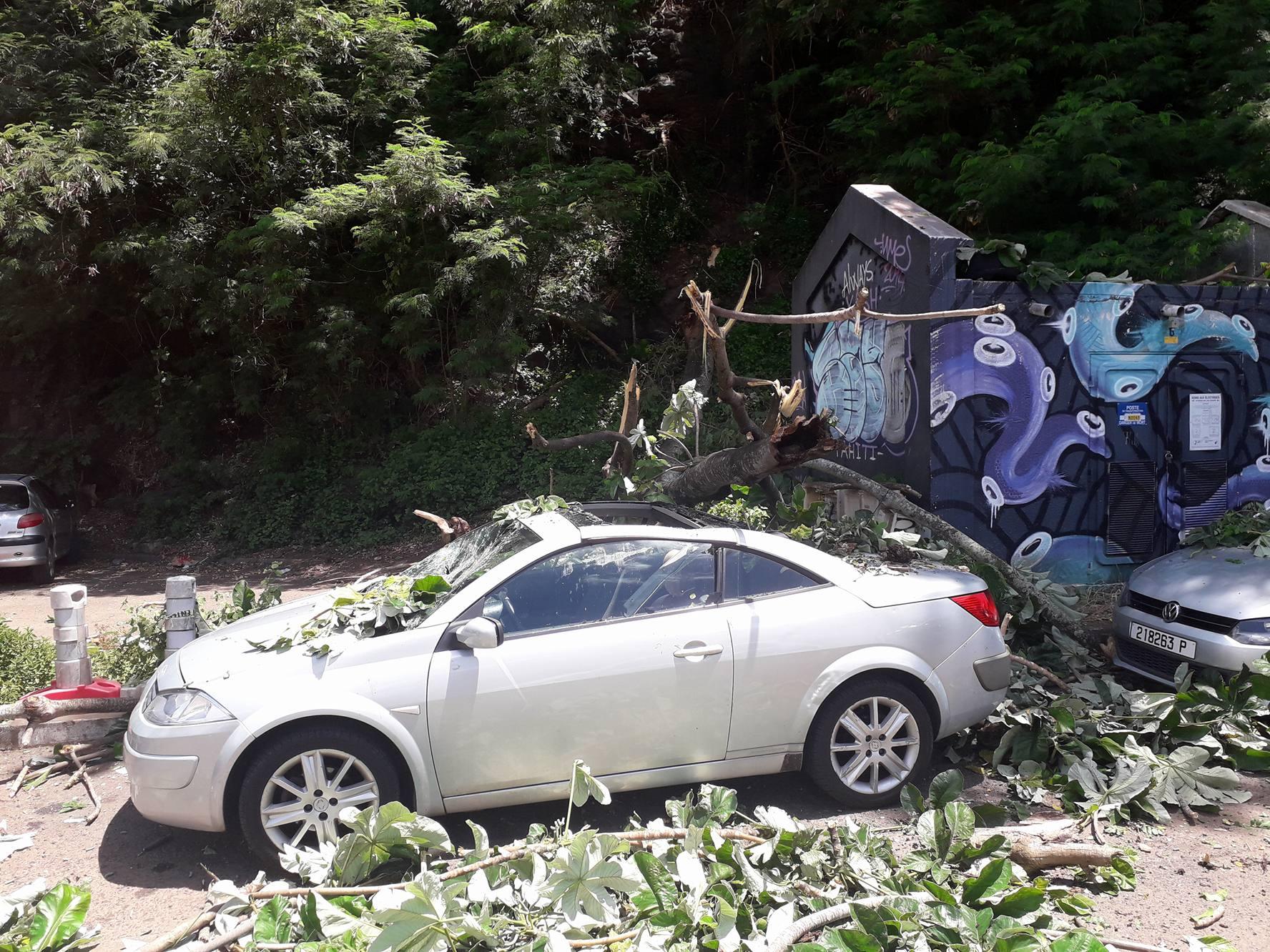 Papeete : un arbre tombe sur une voiture