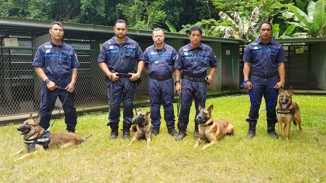 Rudy Olek (au centre) a suivi durant deux semaines quatre agents de l'Uraic de la police municipale de Papeete.