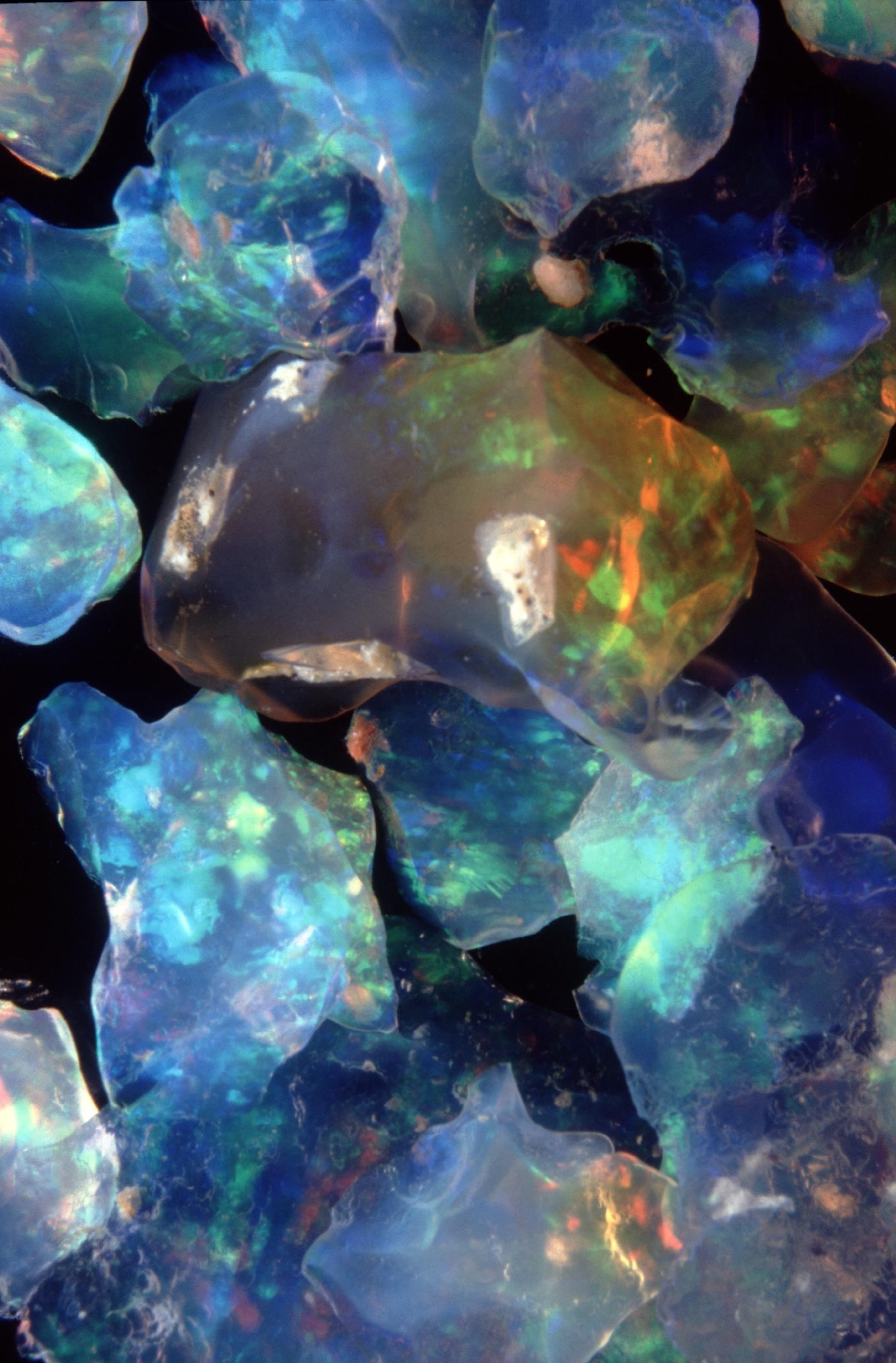 Quelques opales brutes brillant de tous leurs feux : cette pierre est devenue la gemme nationale de l'Australie, qui en est le premier producteur mondial depuis plus d'un siècle.
