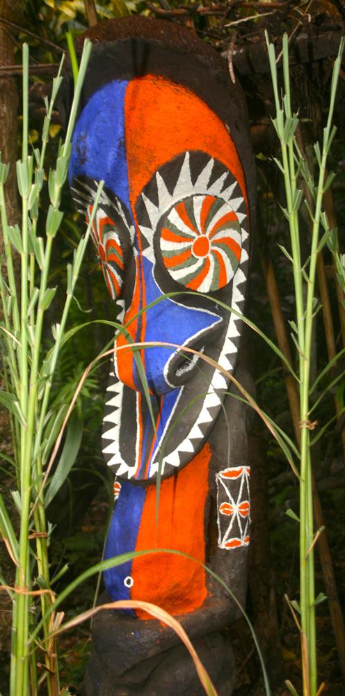 Vanuatu : les fougères sacrées  d'Ambrym