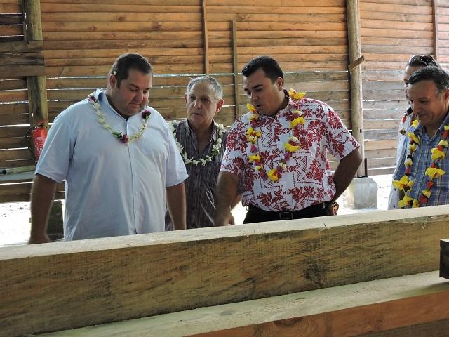Le vice-président Teva Rohfritsch a visité ce jeudi la scierie de Papara, qui fonctionne de nouveau après deux ans d'arrêt d'activité.