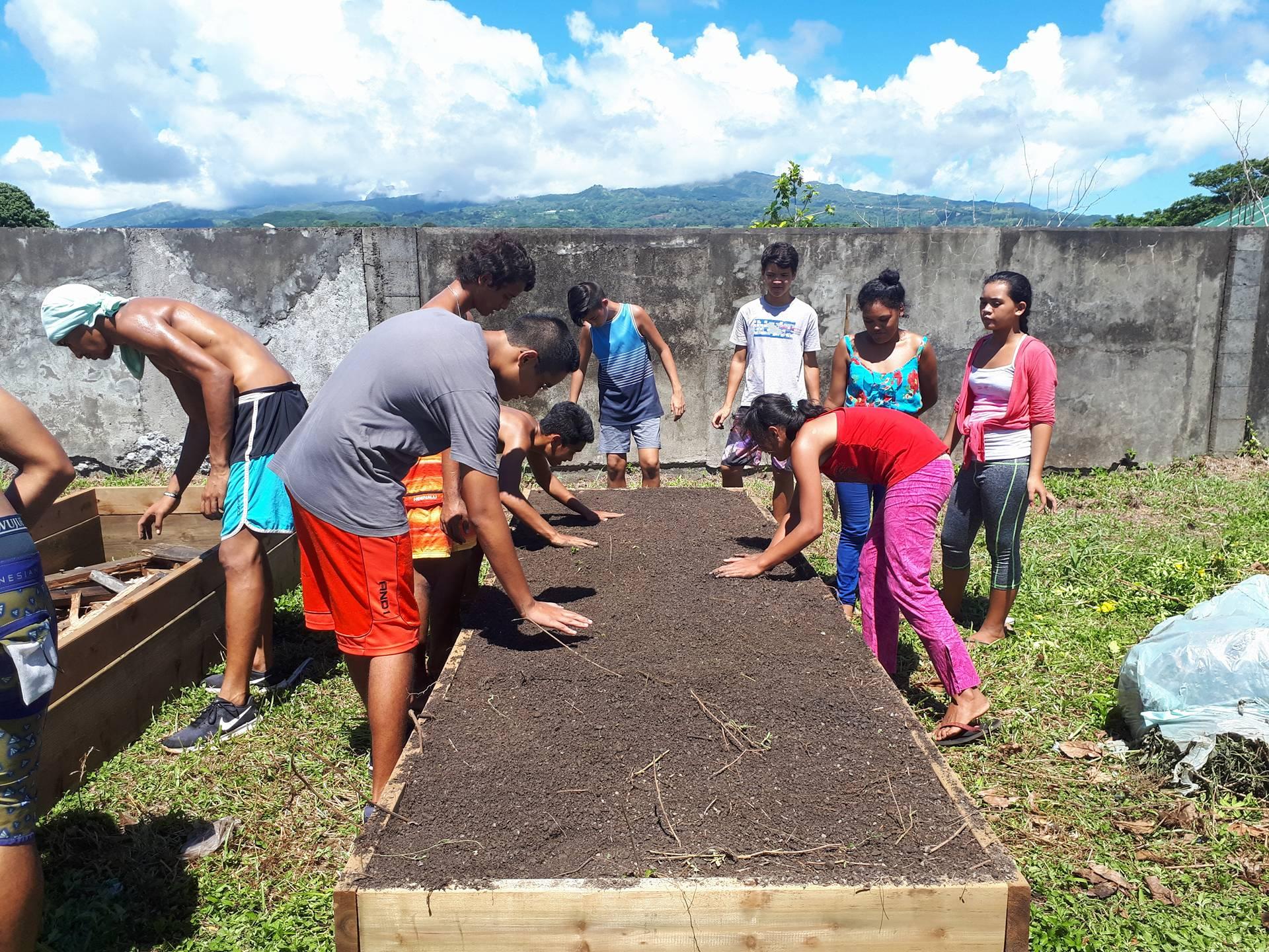 Permaculture: les élèves du lycée agricole de Moorea transmettent leur savoir faire