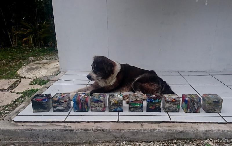 Le résultat du travail des enfants, gardé par le chien du village de Fakarava