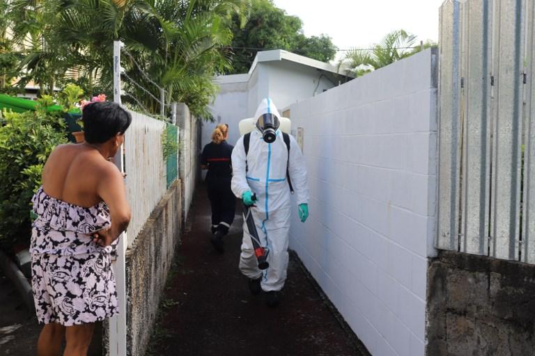 L'épidémie de dengue ne faiblit pas à La Réunion