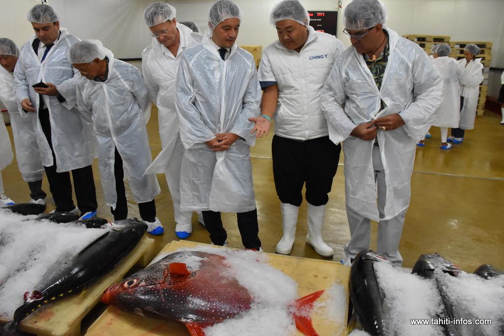 Le ministre de l'action et des comptes publics a assisté à une vente à la criée, lors de sa visite du port de pêche de Fare Ute, lundi.
