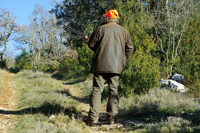 Chasse nocturne au sanglier: un chasseur tué par un de ses collègues
