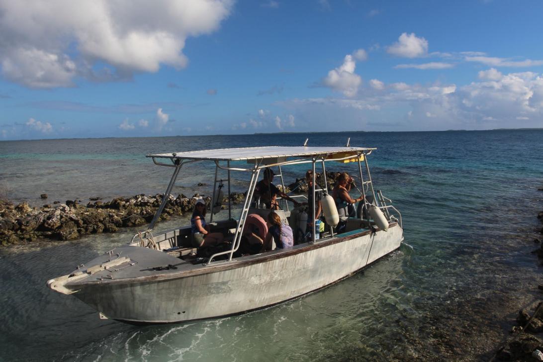 Le confortable bateau du club, implanté à quelques dizaines de mètres de la pension Poerani Nui.
