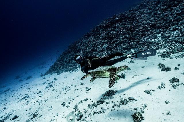 Devant chez lui, Guillaume Néry peut rapidement sortir du lagon, tutoyer les profondeurs et rencontrer des tortues comme sur cette photo. Photo : DR